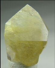 Rutilated Quartz golden yellow Rutile crystal natural terminated Bahia, Brazil