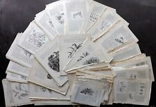 Botanical 19th Cent. Lot of 400 Illustrated Sheets. Wood Engravings