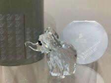 Swarovski Crystal Figurine Medium Elephant Clear 7640 060 000 MIB W/COA
