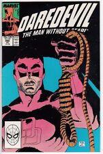 Daredevil Paperback Near Mint Grade Comic Books in English