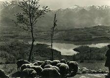 AMATRICE - Il pittoresco Lago Scandarello ed i maestosi monti della Laga 1956