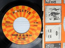 Z-DEBS changing my life for you / I would if I could 1964 Mod Beat Soul 45 w3497