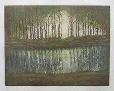 Fritz Mecking/Farbradierung/Landschaft IV/ 100 Exe. um 1980/ mit Rahmen