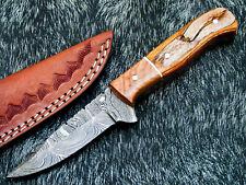 "NEW CUSTOM HAND FORGED DAMASCUS 7.0"" HUNTING KNIFE HARD WOOD HANDLE - UT-6348"