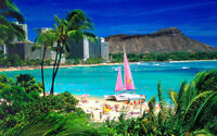 Waikiki Oahu Hawaii sandy beach boat ocean Oil Painting HD Print On Canvas24H547