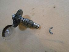 Suzuki LT250 LT 250 LT250E 1984 camshaft cam shaft cams engine motor