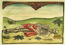 LA GRANDE DANCE MACABRE skeleton ON THE DEATH OF KING original engraving wood