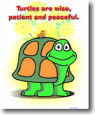 Turtles are Wise, Patient & Peaceful Animal NEW POSTER