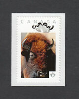 BISON = Picture Postage Personalized  Stamp MNH Canada 2014 p5w6/5