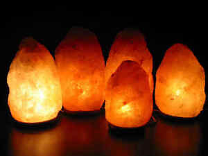 6 Pack! Himalayan Salt Lamp 4-6 Lbs Wholesale Price FREE PRIORITY SHIPPING!!!!