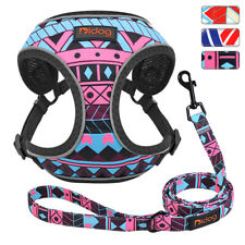 Safety Reflective Dog Cat Vest Harness and Lead Soft Mesh for Small Medium Dogs