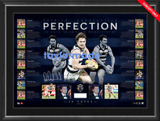PATRICK DANGERFIELD 2016 AFL BROWNLOW MEDALLIST GEELONG CATS SIGNED FRAMED PRINT