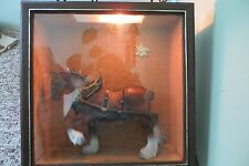 Early Old Famous Budweiser Clydesdale Horse in plastic box, advertising,lighted