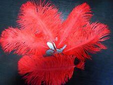 lot de 5 plumes autruche rouge 15 cm