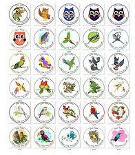 Personalized Return Address Birds Labels Buy 3 get 1 free (zbi3)