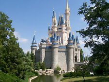NEW    Cinderella Castle 950 + Digital Printable Photos From Walt Disney World
