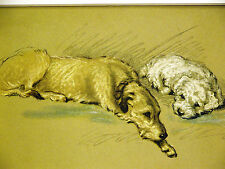 Lucy Dawson Book Cover WOLFHOUND and SEALYHAM (5) 1946 Vintage Dog Print Matted