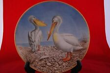 The 12 Waterbird Plates from Danbury Mint  PELICAN