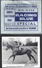 RACING BLUE-HORSE RACING- ANGLO (CARD+ ORIGINAL ENVELOPE)