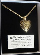 Memorial Locket Necklace Pet Always in My Heart Antique Gold Ash Urn Dog Cat New