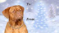 Dogue de Bordeaux Christmas Labels by Starprint - Auto combined postage