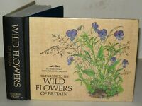 Field Guide To The Wild Flowers Of Britain - HB 1982 Reprint - Readers Digest