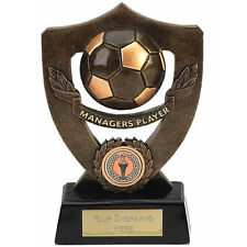 """FOOTBALL Soccer MANAGER'S PLAYER Trophy 7"""" FREE ENGRAVING Personalised Award NEW"""