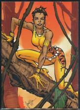 2012 Cryptozoic DC Comics New 52 Trading Card #58 Vixen