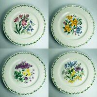 Thomson Pottery Floral Garden Dinner Plates SET 4  Iris Geranium Daffodil Crocus