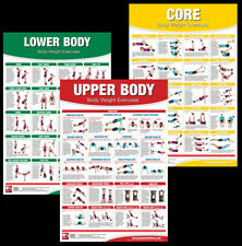 BODY WEIGHT EXERCISES Professional Fitness Gym Workout Wall Charts 3 POSTER SET