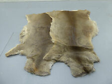 ROE DEER SKIN FUR HIDE RUG TAXIDERMY Pelt Home decor Fly Tying Material Fishing