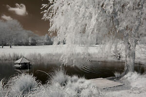 Nikon D3000 infrared converted Camera 720nm standard Infrared Converted 720 nm
