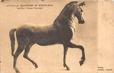 B6615 Italy Napoli Cavallo Quadriga di Ercolano