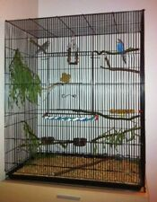 Large Metal Pet Bird Budgie Cage /Parrot/Сockatiel Aviary House & Accessories