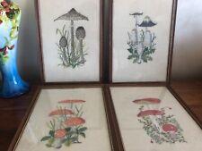 4 tableaux point de croix les champignons avec cadre VINTAGE 35 sur 27 cm