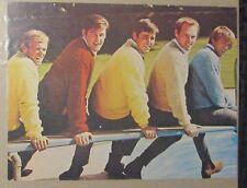 "1960's THE BEACHBOYS 8x11"" Rock n Roll Pin-Up VG+ 4.5 Brian Wilson"