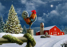 Rooster on Fence - Box of 18 Christmas Cards by LPG Greetings