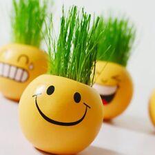 Cute Emoji Expression Mini Bonsai DIY Grass Hair Desk Plant Pot Home Decor Gift