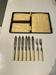 Vintage Bone Handle Cutlery In Case
