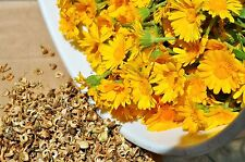 Calendula Seeds - RESINA - Pot Marigold - Edible Flowers & Leaves - 200 Seeds