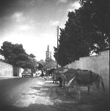 TANGER c. 1950 - Rue Auto Ânes alignés Minaret Maroc - Négatif 6 x 6 - OST 46