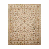 8' x 10'1'' Hand Knotted 100% Wool Agra Traditional Oriental Area Rug Beige