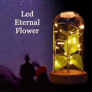 WR Glass Dome LED cadeaux de fête des mères Saint-Valentin romantique rose noire