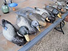 Lot 8 Vintage 6 Victor 3- D9, 2- Mallard Hen 1- Drake, 2- Carry Lite Duck Decoy