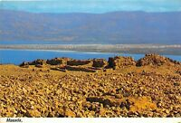 B27837 Masada the store hause with view to Dead Sea  israel