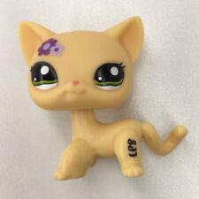 Littlest Pet Shop #1962 Purple Flowers Cat LPS Kitty Hasbro Kids Birthday Gift A