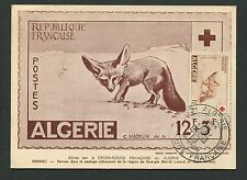 ALGERIE MK 1957 CROIX ROUGE FENNEC Red Cross Fox CARTE MAXIMUM CARD MC cm d7058