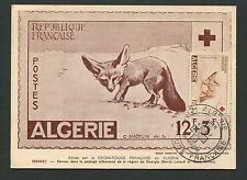 Algerie MK 1957 CROCE ROSSA Fennec RED CROSS FOX carte MAXIMUM CARD MC cm d7058