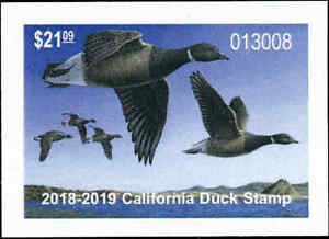 CALIFORNIA  #48  2018  STATE DUCK STAMP BLACK BRANT by Mark Thone