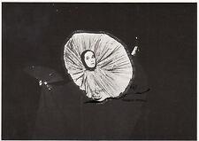 Scheda d'arte: Lilian siede-Victoria Chaplin nel loro circo